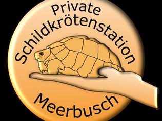 zum Brunch in der Schildkrötenstation