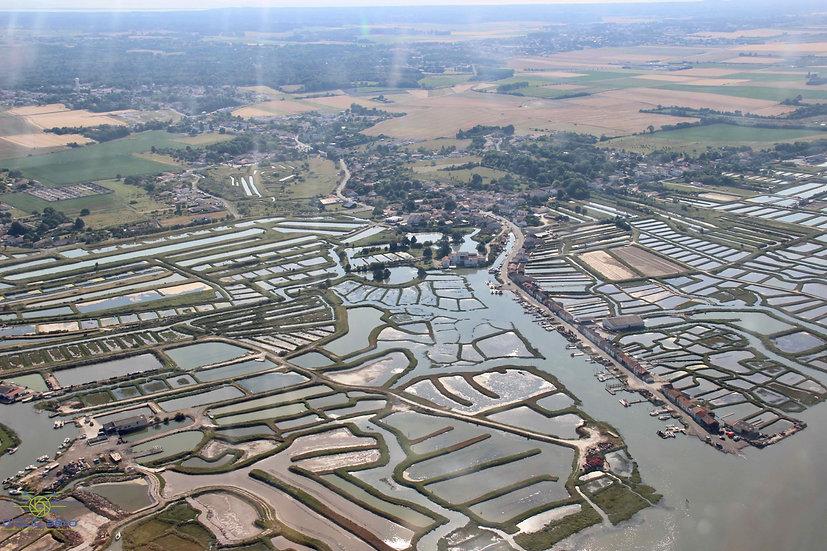 Survol de la Seudre et la Charente (1h)