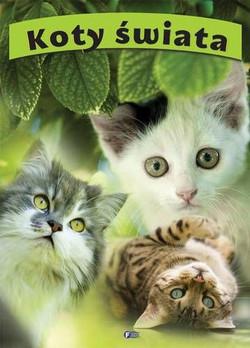 koty-swiata-b-iext11314208