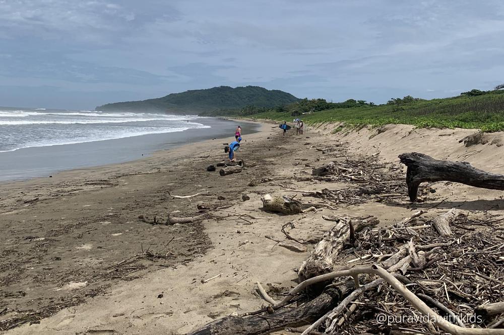 beach with debris