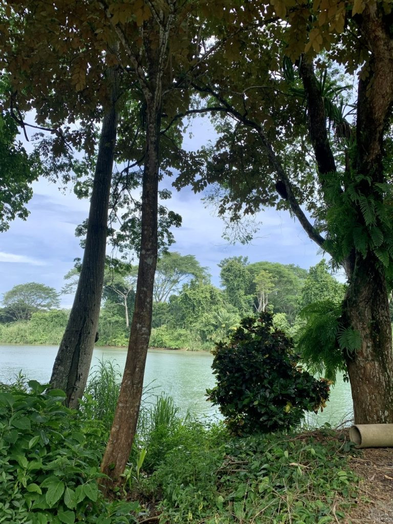 View from riverbank in Dominical Costa Rica