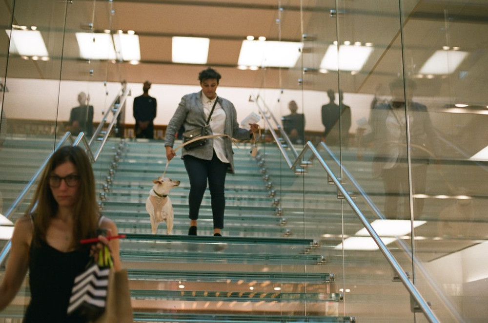 woman in airport with dog