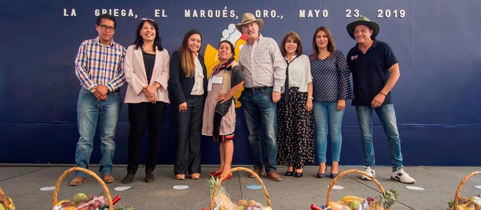 """Se llevó a cabo la edición número 26 del tradicional """"Dia del Pollo"""" en El Marqués"""