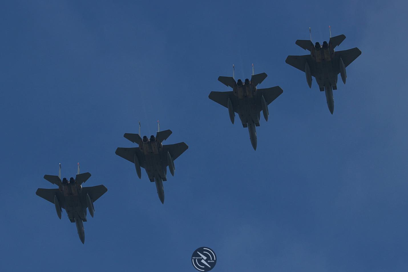 USAF ANG F15 Frisian Flag (7).JPG