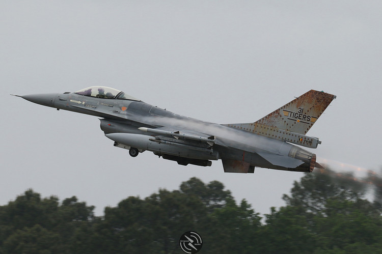 BAC F-16 NATO Tiger Meet 2019 (18).JPG