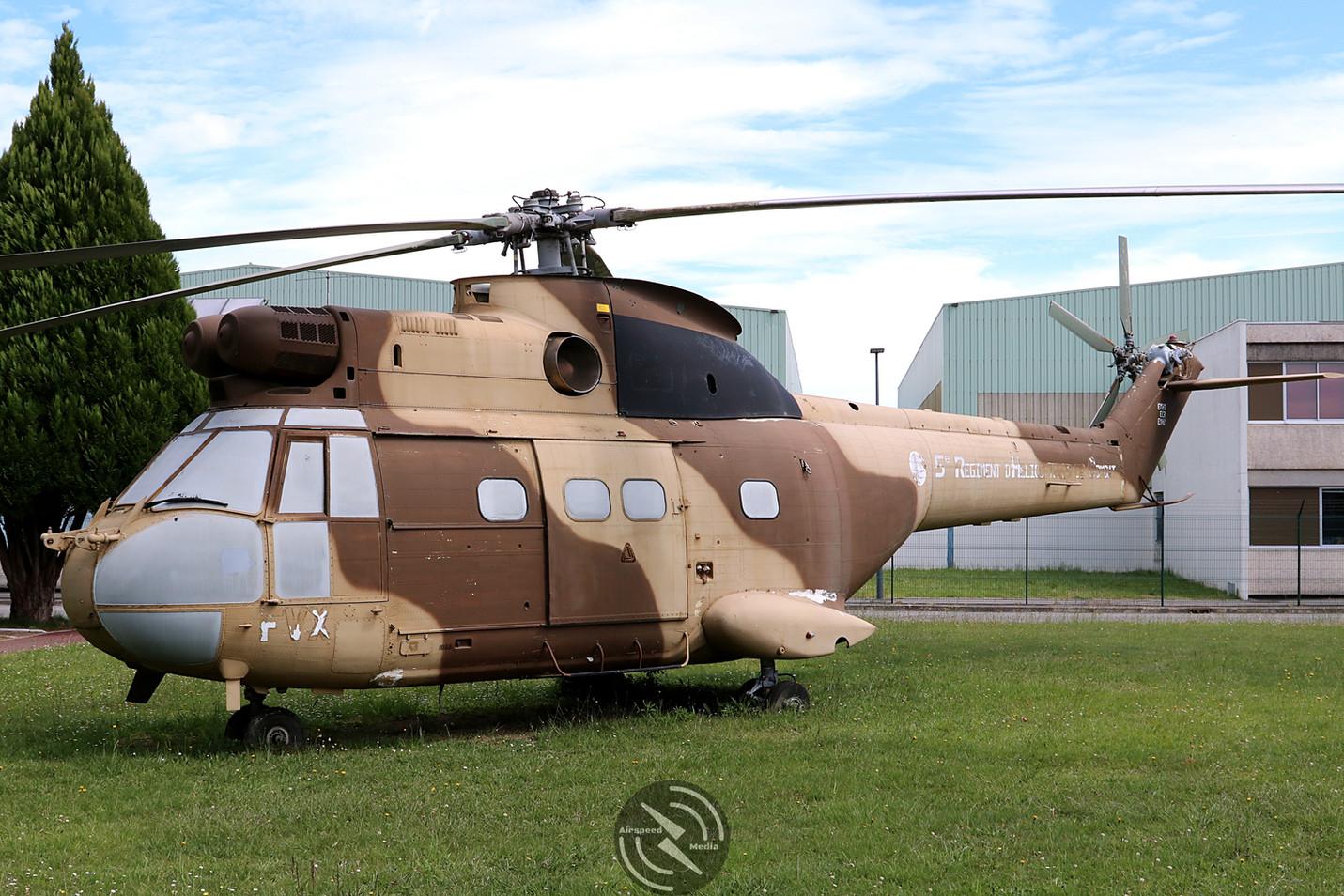 Puma GG ALAT 5th Regiment Pau May 2019