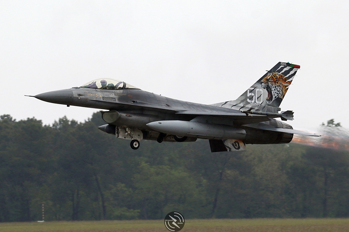 FAP F16 Nato Tiger Meet 2019.JPG