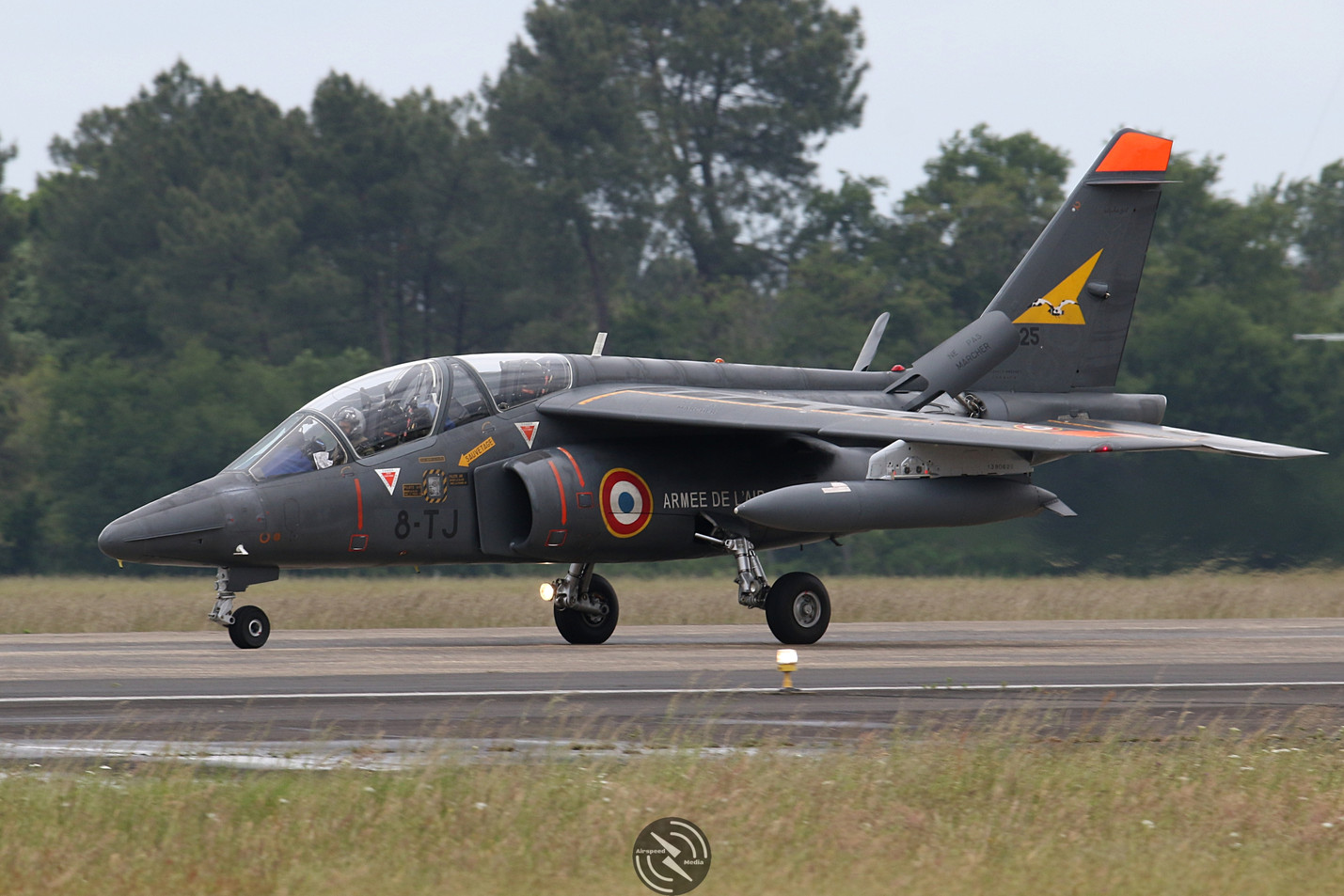 AdlA Alpha Jet NATO Tiger Meet 2019 (26)