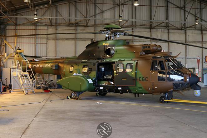 Cougar ALAT 5th Regiment Pau May 2019  (