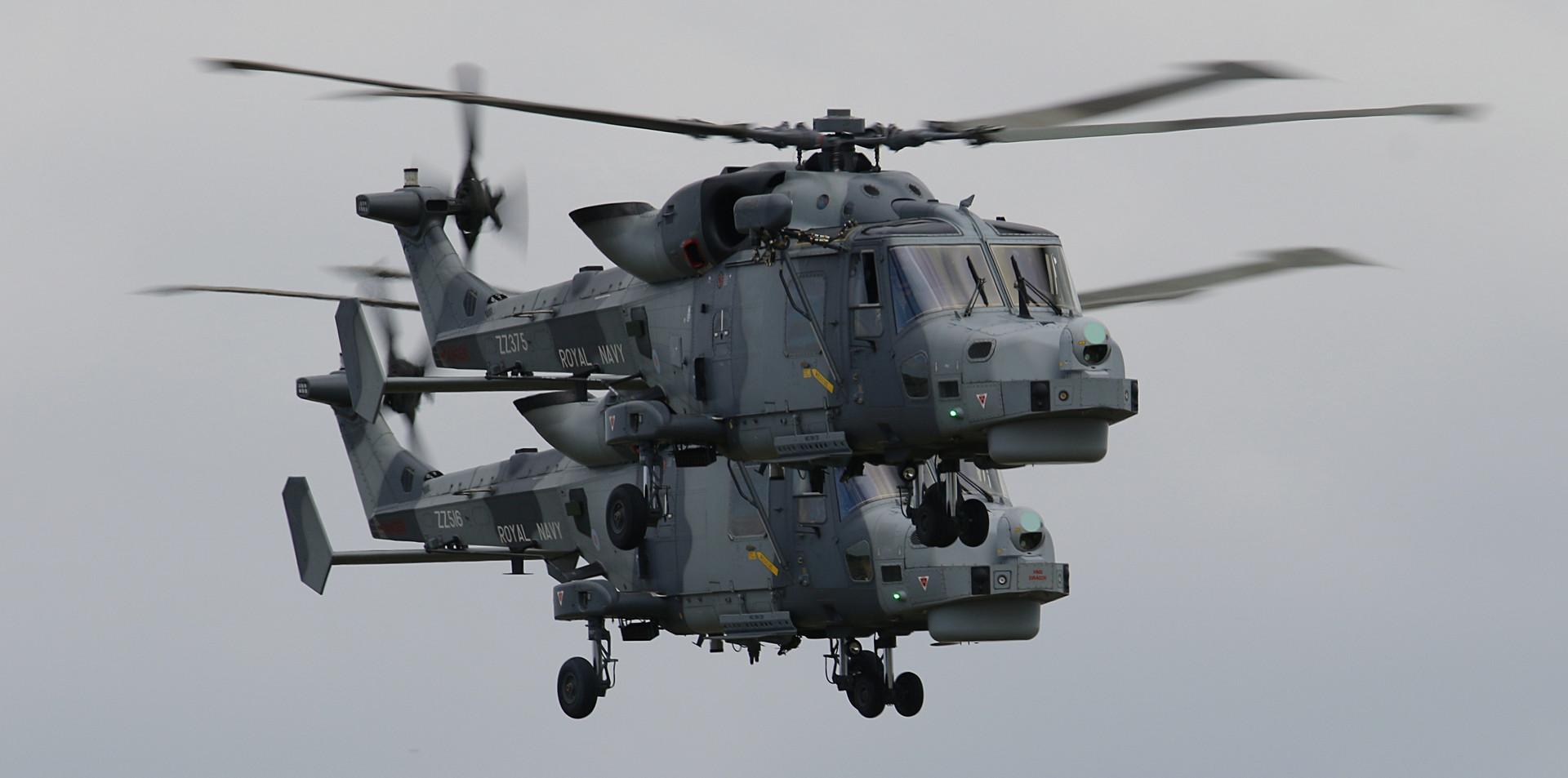 Royal Navy Blackcats RNIAD 2019 (50).JPG