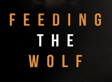 "The Inner Battle and Price Of War Examined In ""Feeding The Wolf"" By Author Jennifer Leigh"