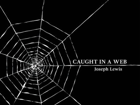 "High School Drug Rings, Gangs and Revenge Are All Encompassing In ""Caught In A Web"" By Joseph Lewis"