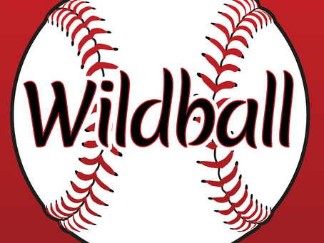 """Collegiate Baseball Takes Center Stage For The Coming Of Age Story """"Wildball"""" By Author Brian Engles"""