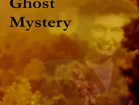 "Mystery, Supernatural, Ghosts and Women Sleuths, Read About All In ""The Wildwood Ghost Mystery"""