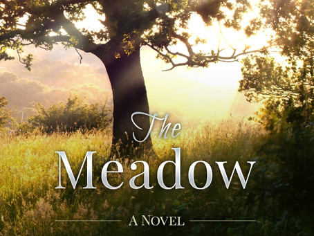 """""""The Meadow"""" is a novel of love, sacrifice, and service set in By Author Scott A. Winkler"""