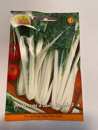 Sachet semences Poirée verte à carde blanche 3