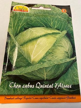 Sachet semence Chou cabus Quintal d'Alsace