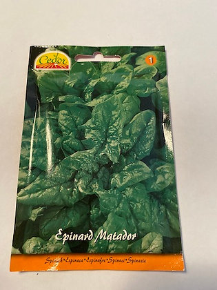 Sachet semences Epinard Matador