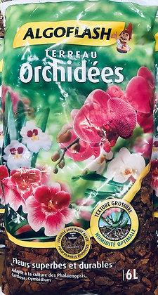 Terreau spécial orchidées ALGOFLASH 6 l