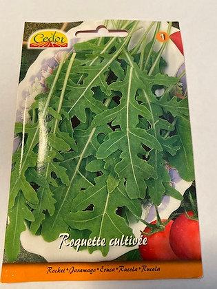 Sachet semences Roquette cultivée