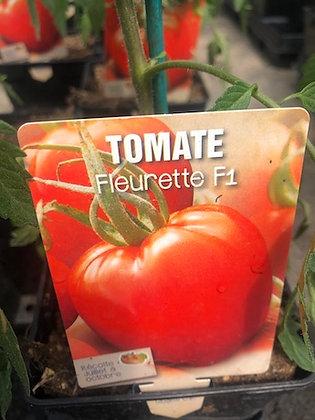 Tomate fleurette F1 greffée  Ct1L