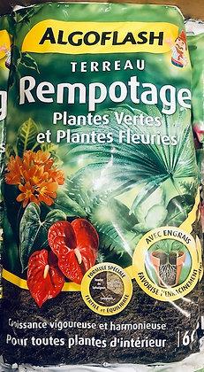Terreau rempotage plantes vertes et fleuries 6L ALGOFLASH