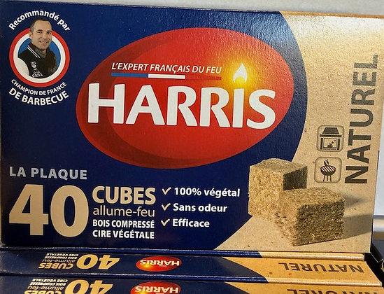 40 cubes 100% Naturel HARRIS