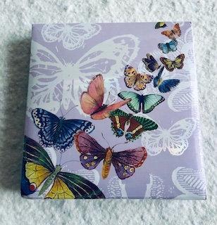 Notebook 150 feuilles avec stylo Papillon