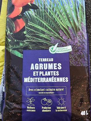 Terreau plantes méditerranéennes
