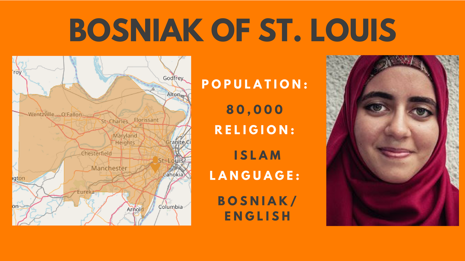 Bosniak of StL