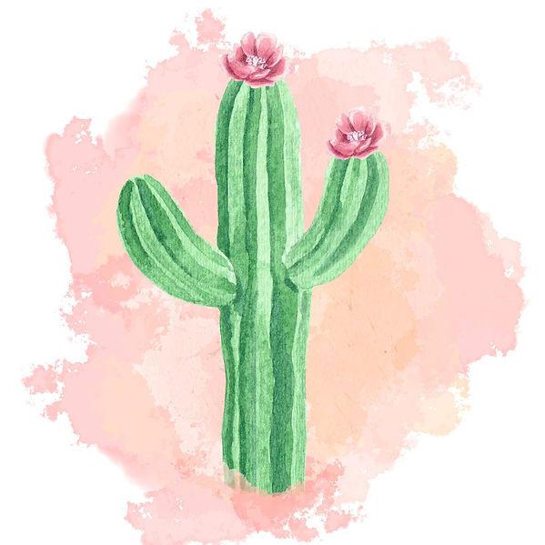 Cactus2_edited_edited.jpg