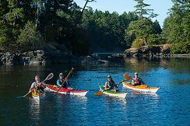 Kayak Rental Sidney BC
