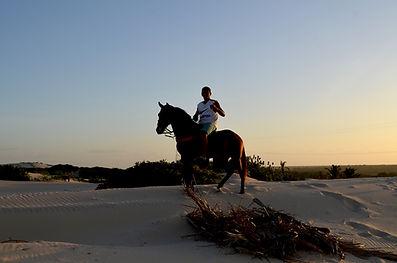 Turismo passeio cavalo dunas