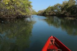 Passeios Rio jaguaribe, turismo de b