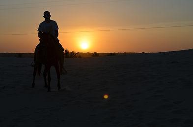 por do sol cavalo dunas cumbe