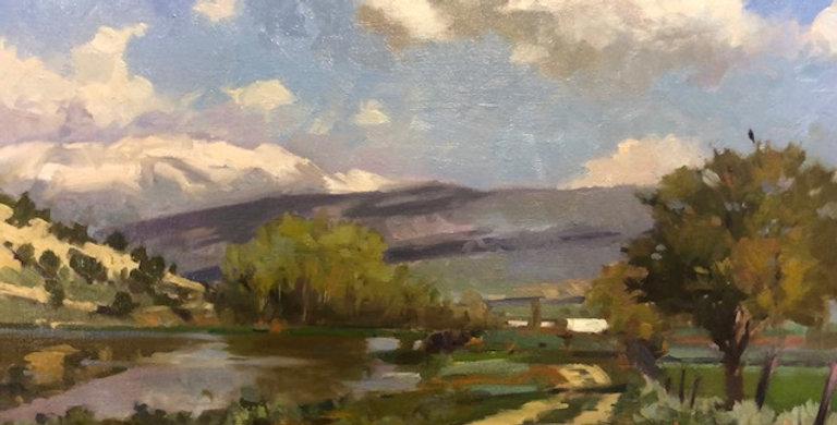 Randall Lake | Spring City Lane