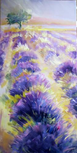 Jaune Violet100x50 cm 300€