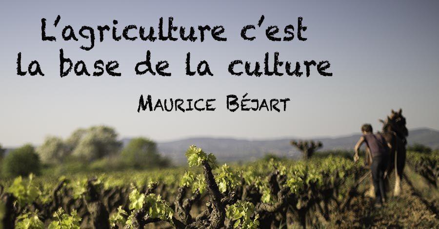 l-agriculture-c-est-la-base-de-la-cultur