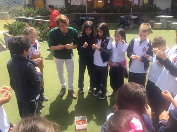 Alimentación saludable y natural en escuelas de Medellín