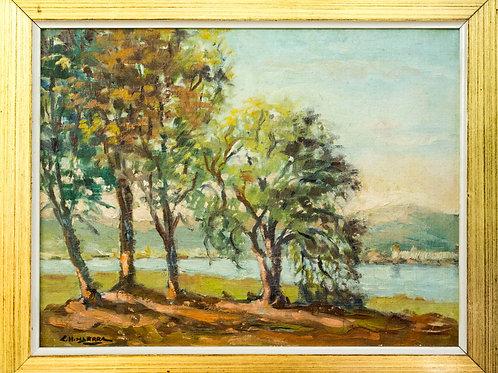 Árboles en el Río