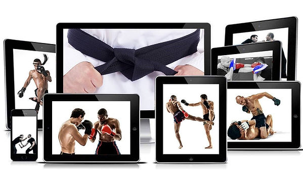 martial arts devices.jpg