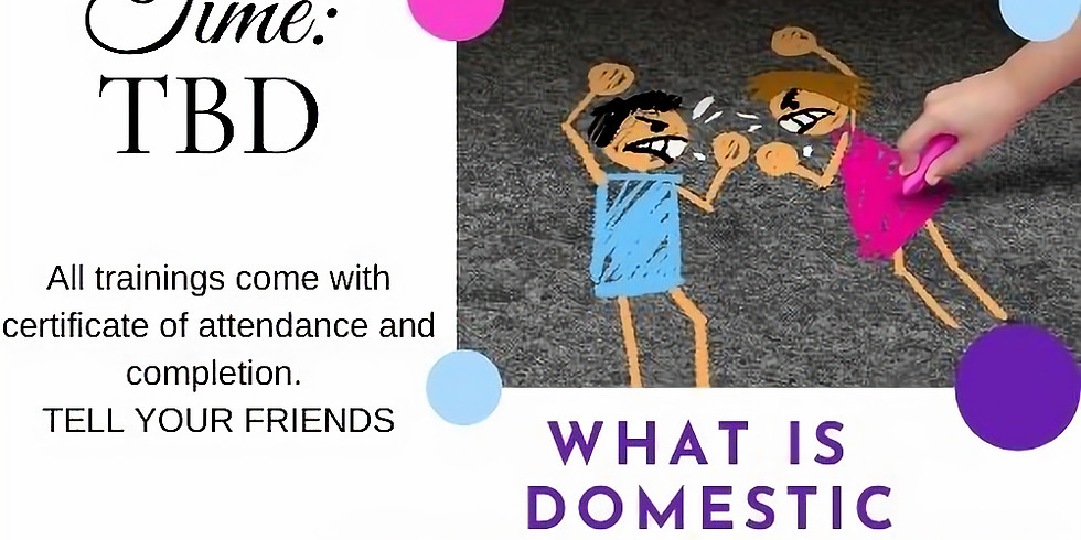 What is Domestic Violence Really? DV 101 training