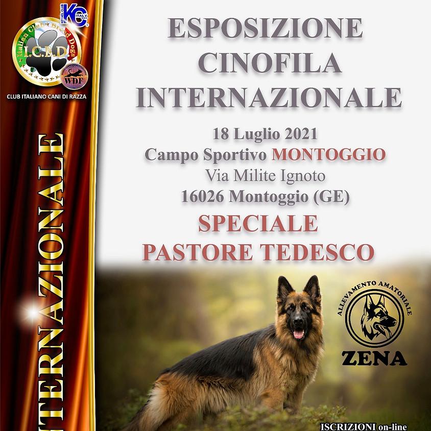 Esposizione Internazionale di Genova