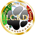 LOGO_ICBD Ufficiale.png