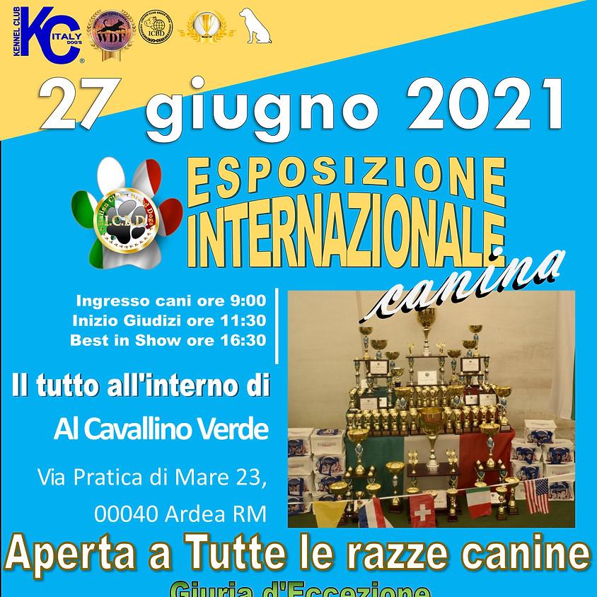Esposizione Internazionale di Roma