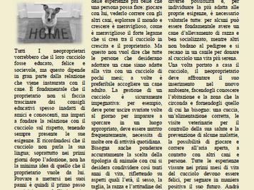 L'Editoriale di ICBD