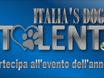 Italian Dog's Talent Finalissima