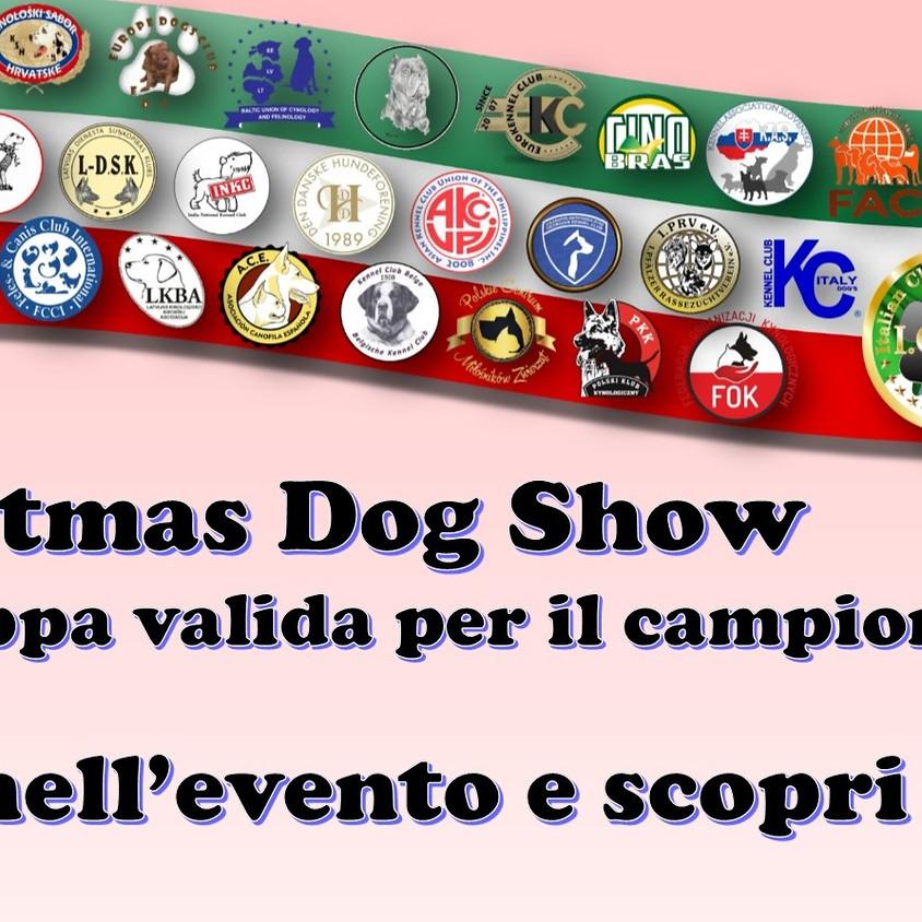 Christmas Dog Show del Nord Italia