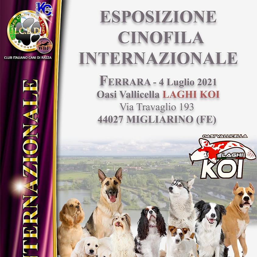 Esposizione Internazionale di Ferrara
