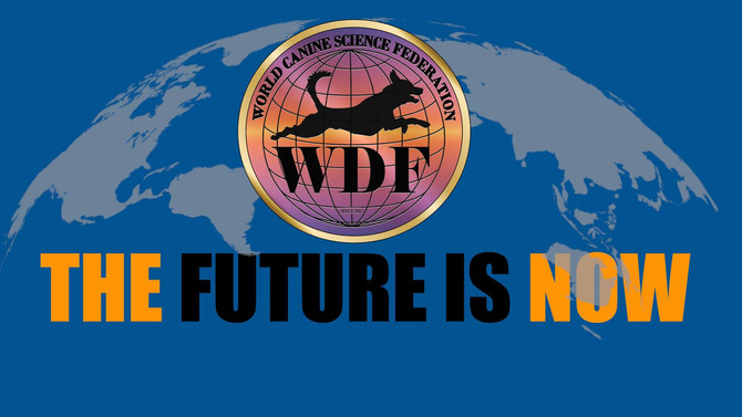 YOU ALSO JOIN THE WDF